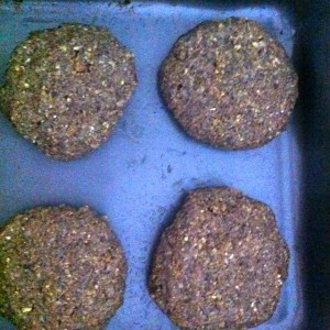 Dietitian UK: Mushroom and Bean Burgers