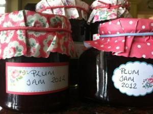 Dietitian UK: Plum Jam