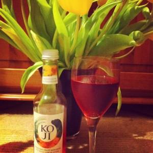 Dietitian UK: Koji Mandarin and Cranberry